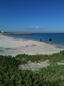 "South Beach Fremantle ""Wedding Beach'"